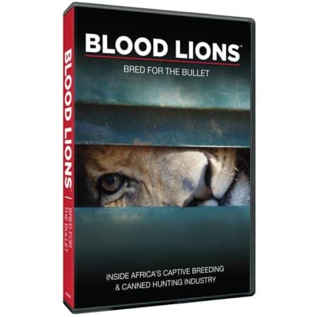 BLOOD LIONS: BRED FOR THE BULLET 7