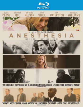 ANESTHESIA 13