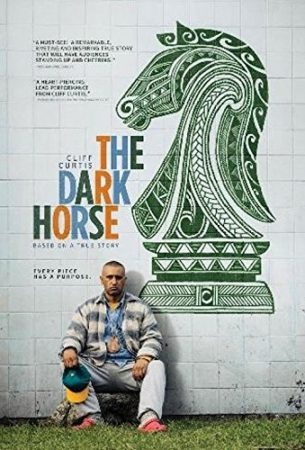 """ENTER TO WIN A DVD COPY OF """"THE DARK HORSE"""" 5"""