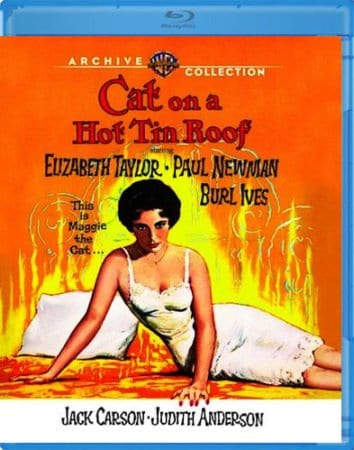 CAT ON A HOT TIN ROOF 1