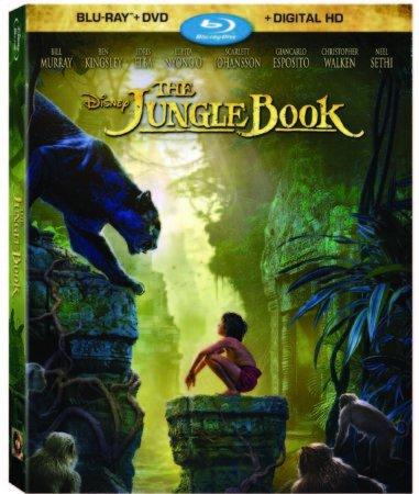 https://andersonvision.com/wp-content/uploads/2016/08/junglebookbluhighres.jpg