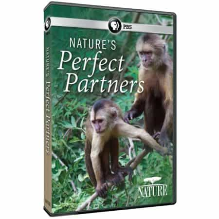 NATURE'S PERFECT PARTNERS 8
