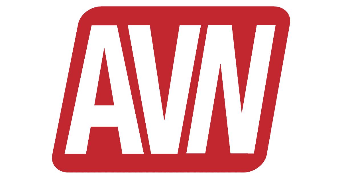 AVN Announces Open Casting Call for 2017 AVN Awards Trophy Girls 5