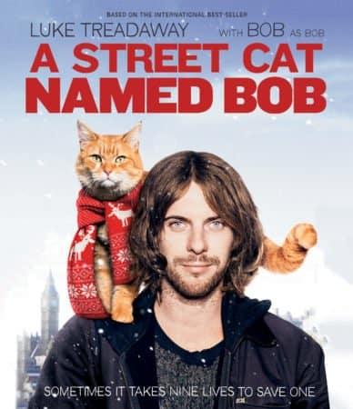 STREET CAT NAMED BOB, A 1