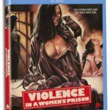 VIOLENCE IN A WOMEN'S PRISON 23