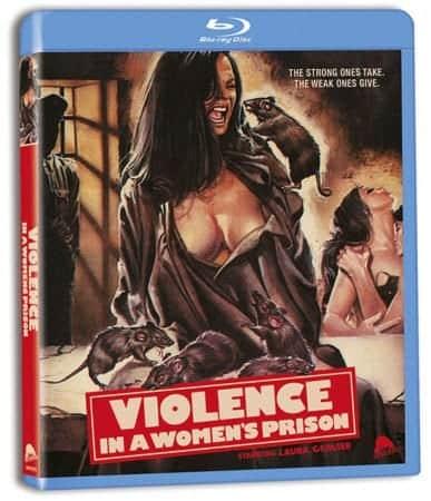 VIOLENCE IN A WOMEN'S PRISON 5
