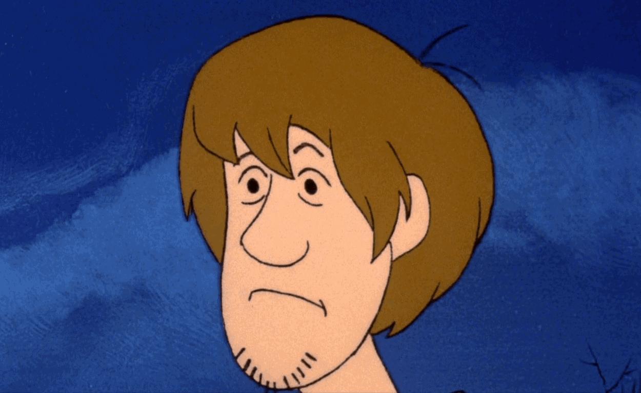 Shaggy head Scooby-Doo