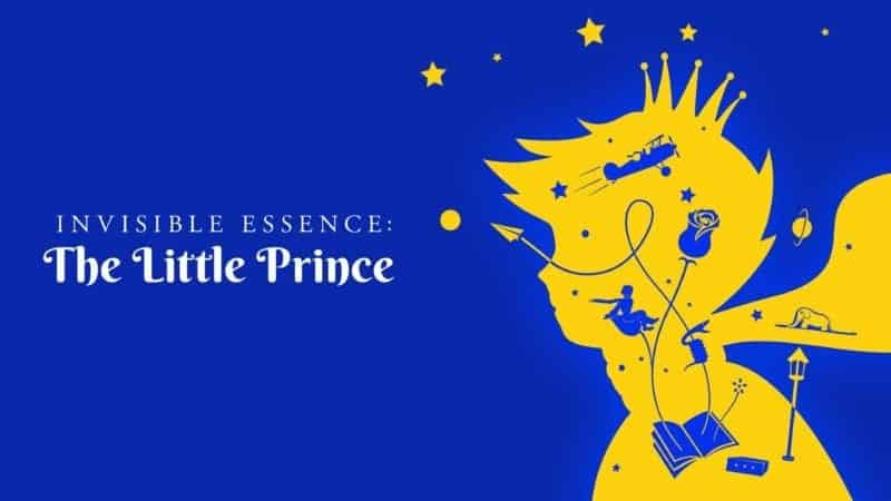 Invisible Essence: The Little Prince 11