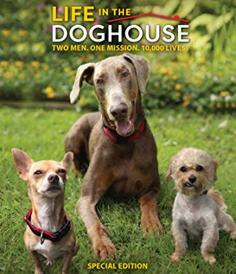 Life in the Doghouse [Review] 5