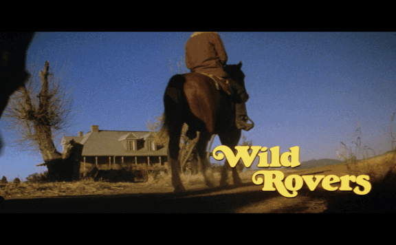 wild rovers title