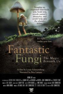 Fantastic Fungi and Promare land new trailers! 3