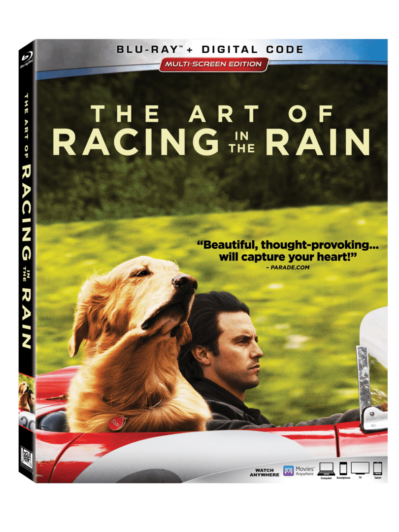 ART OF RACING IN THE RAIN sept home entertainment