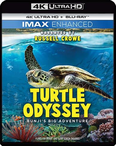 "IMAX Enhanced ""TURTLE ODYSSEY: BUNJI'S BIG ADVENTURE"" 4K Ultra UHD + Blu-ray + DVD (December 3) 1"