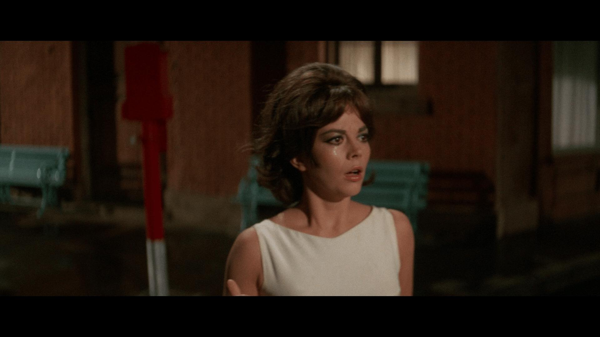 Penelope Warner Archive Blu-ray 2