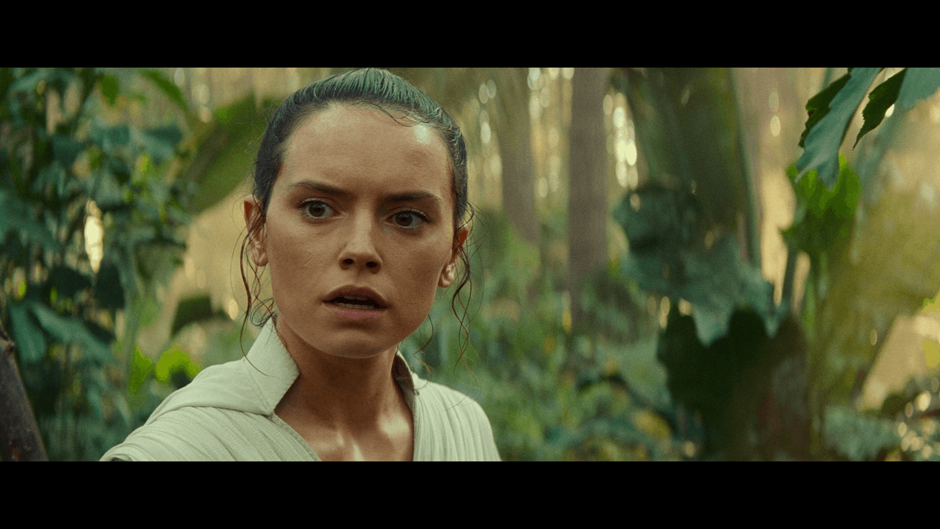 Star Wars: The Rise of Skywalker [Expectations Managed] 63