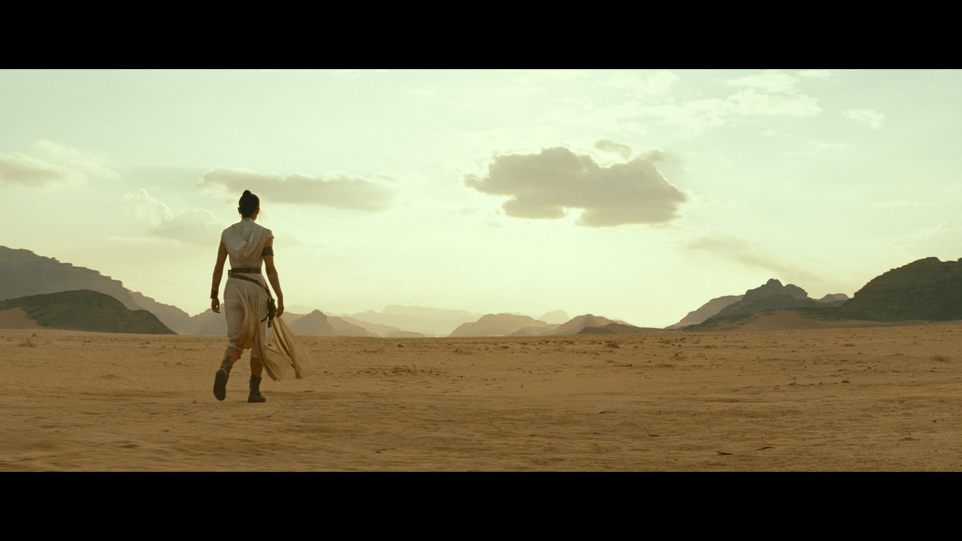 Star Wars: The Rise of Skywalker [Expectations Managed] 15