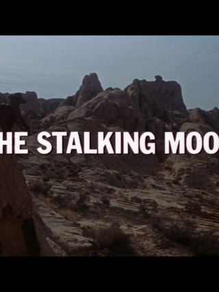 the stalking moon title warner archive