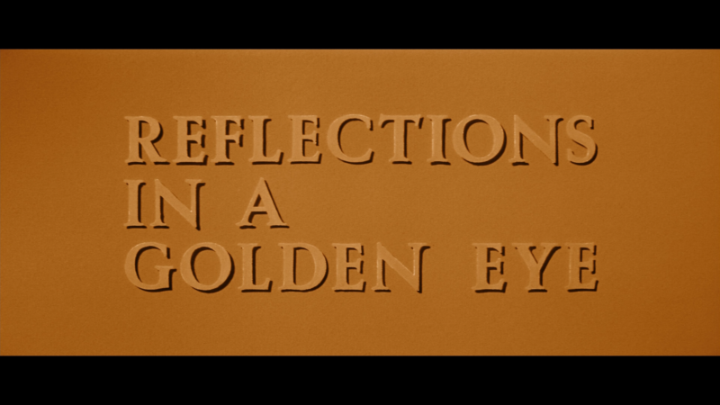 reflections in a golden eye title