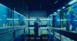 little fish movie promo scene