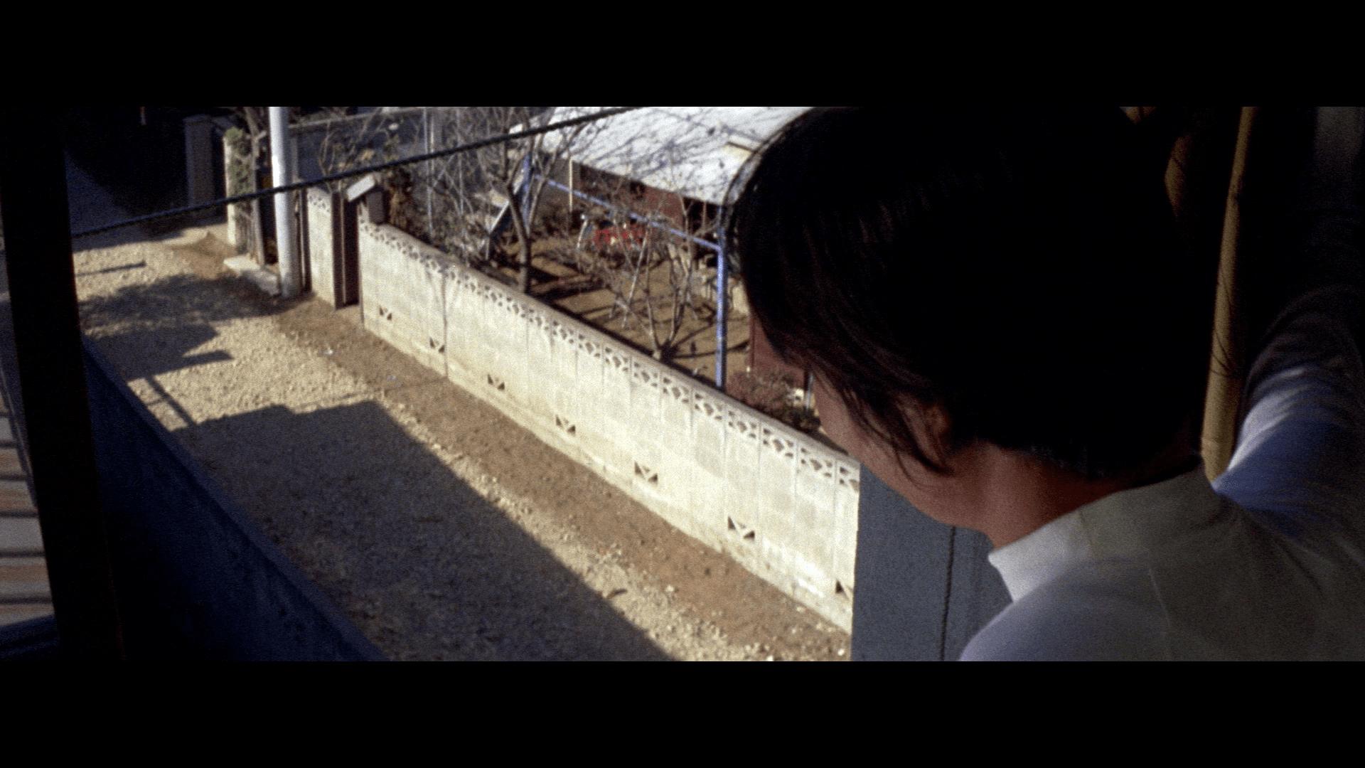 Love Hunter (1972) [Nikkatsu Blu-ray review] 2
