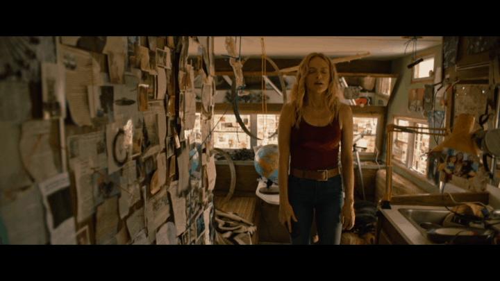 Wander (2020) [Insane DVD review] 7
