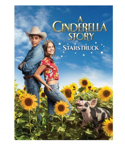 Cinderella Story Starstruck DVD Boxart 2