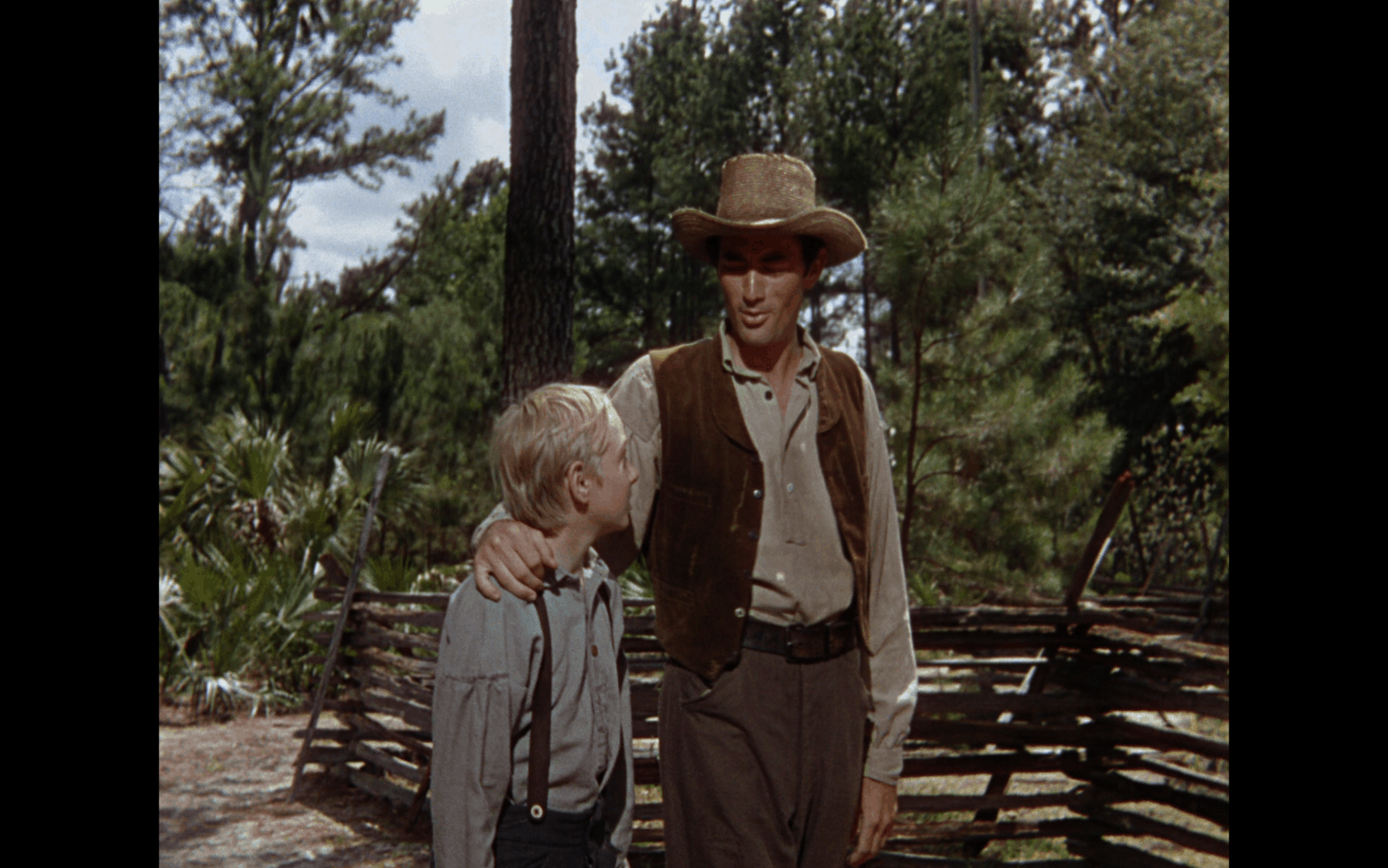 the yearling warner archive 2