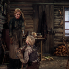 the yearling warner archive 13