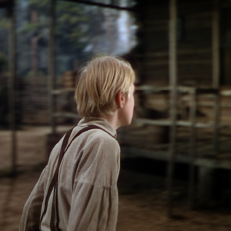 the yearling warner archive 18