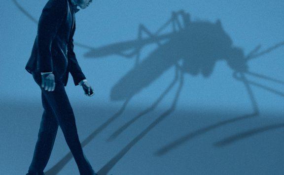 Mosquito State Lincoln Center